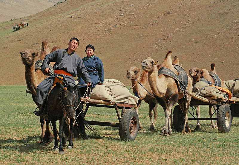 nomads-with-camel-carts