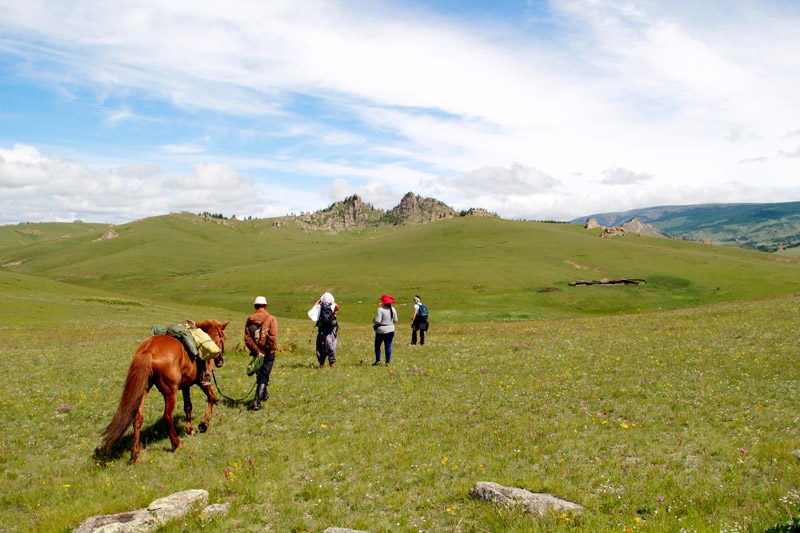 yak trekking tour through the fields