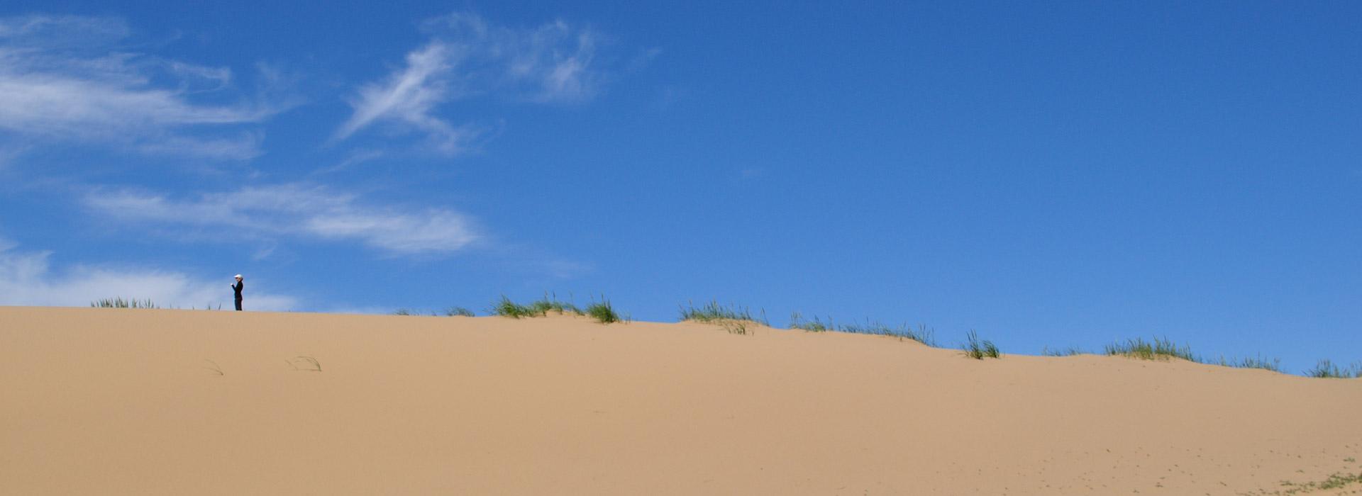 Arburd Sands