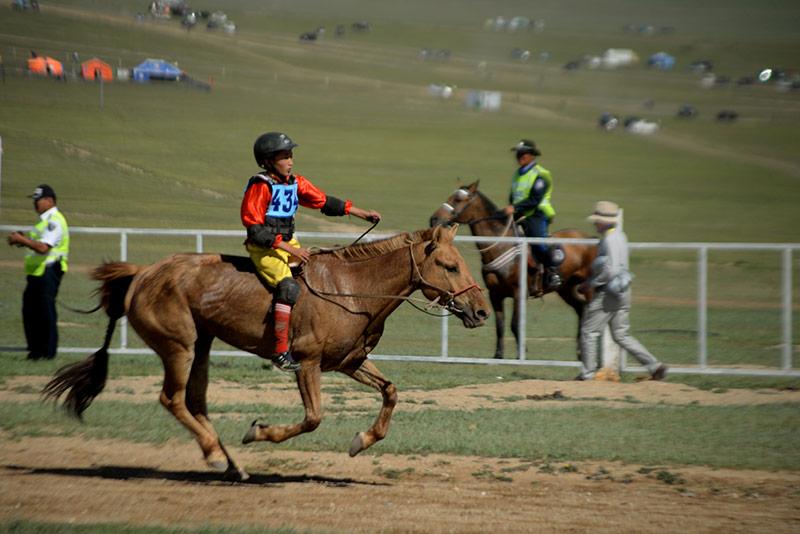 danshig-naadam-horse-racing