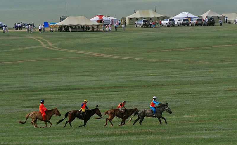 horse-racing-naadam-festival