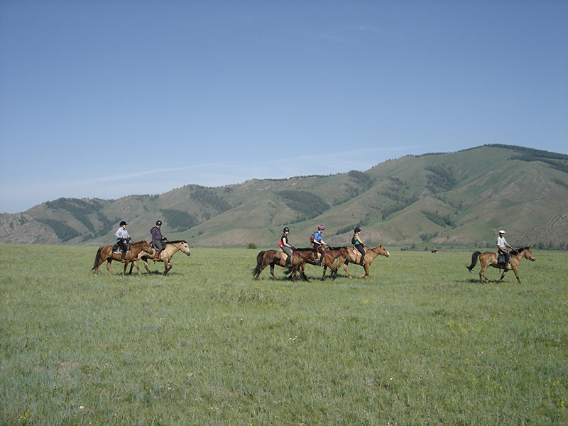 jalman-meadows-horse-riding