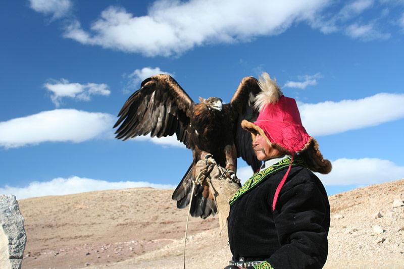 mongolian-eagle