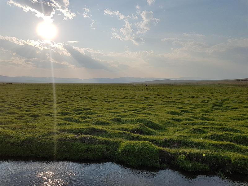 orkhon-steppe