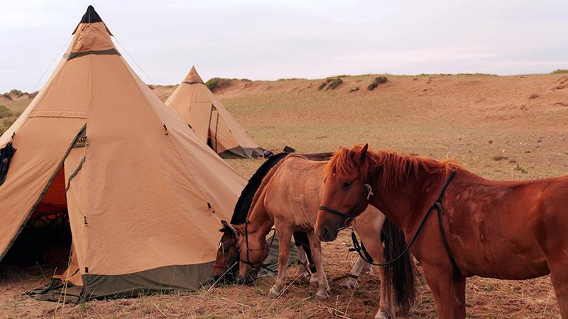 accommodation-in-gobi-steppe-ride