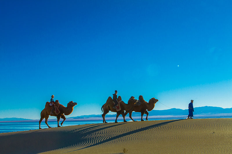 camel-riding-in-sands