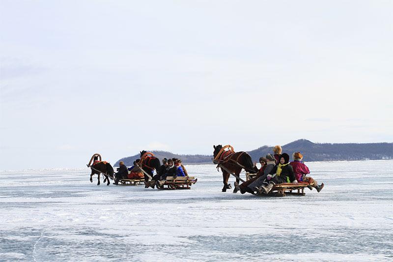 horse-sled-in-huvsgul