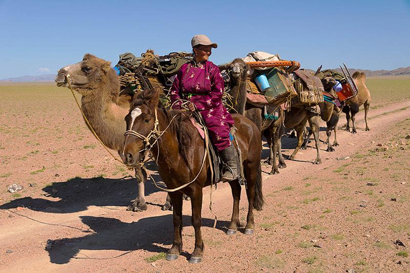 local-nomadic