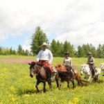 mongol-horse-trails
