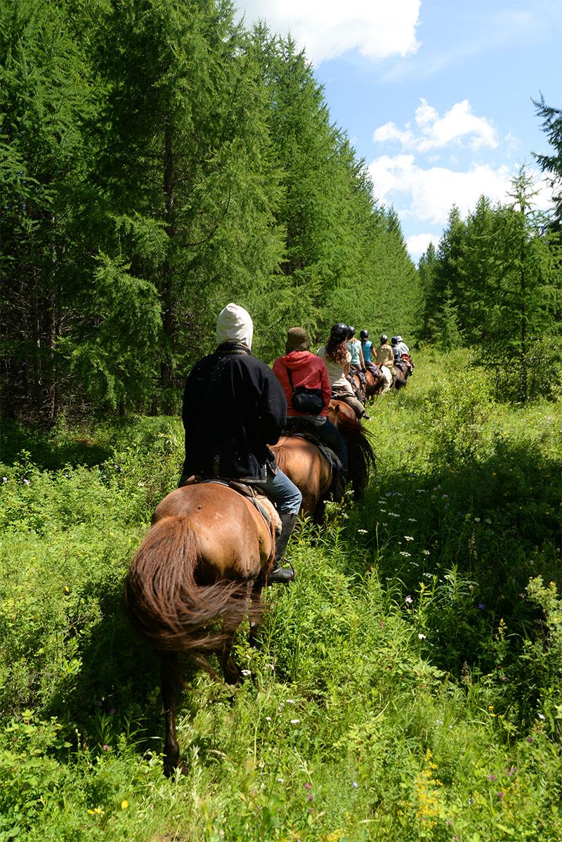 mongolia-horseback-journeys