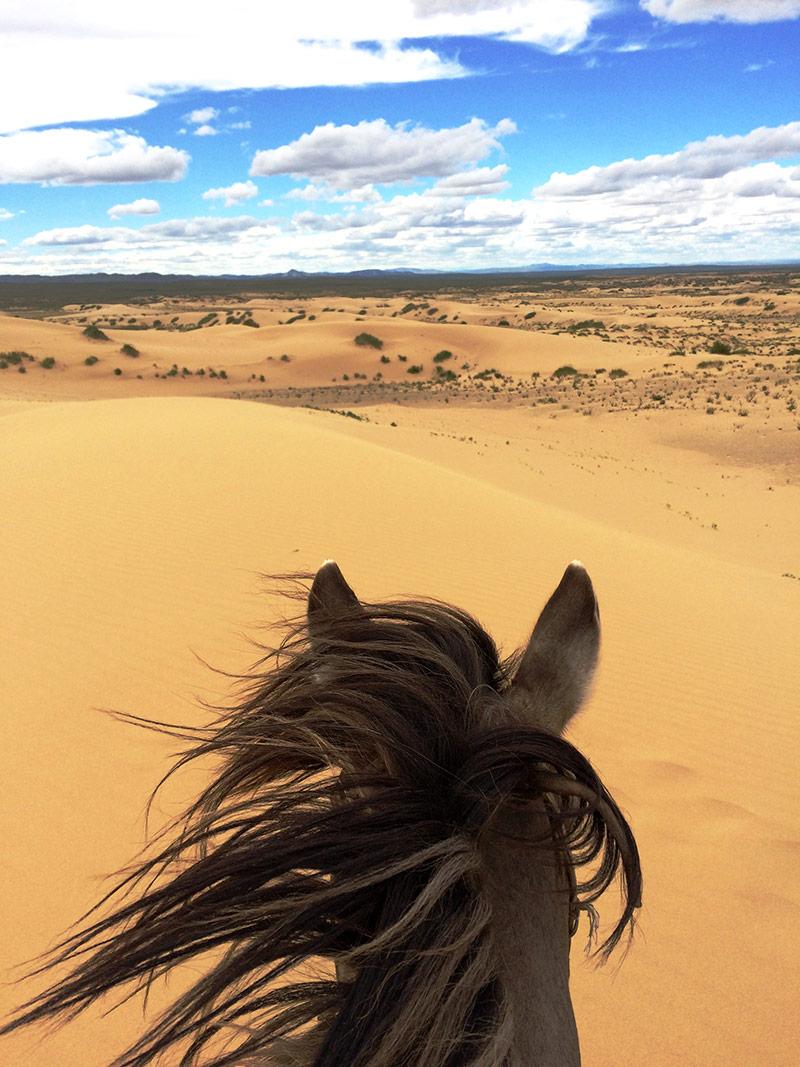 steppe-ride-desert