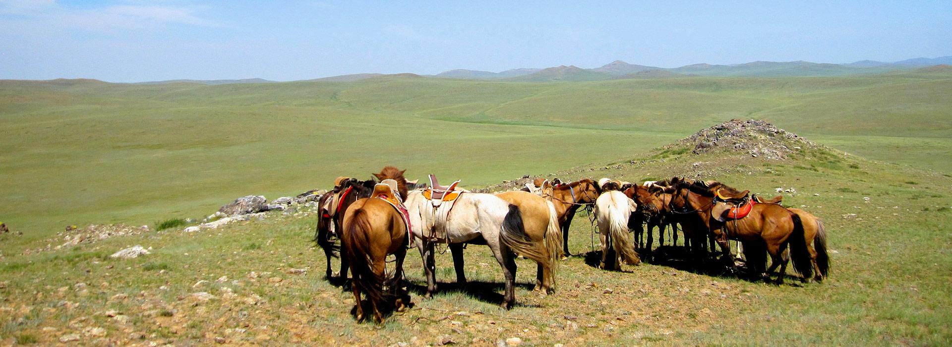 steppe-ride-mongolia-horses-