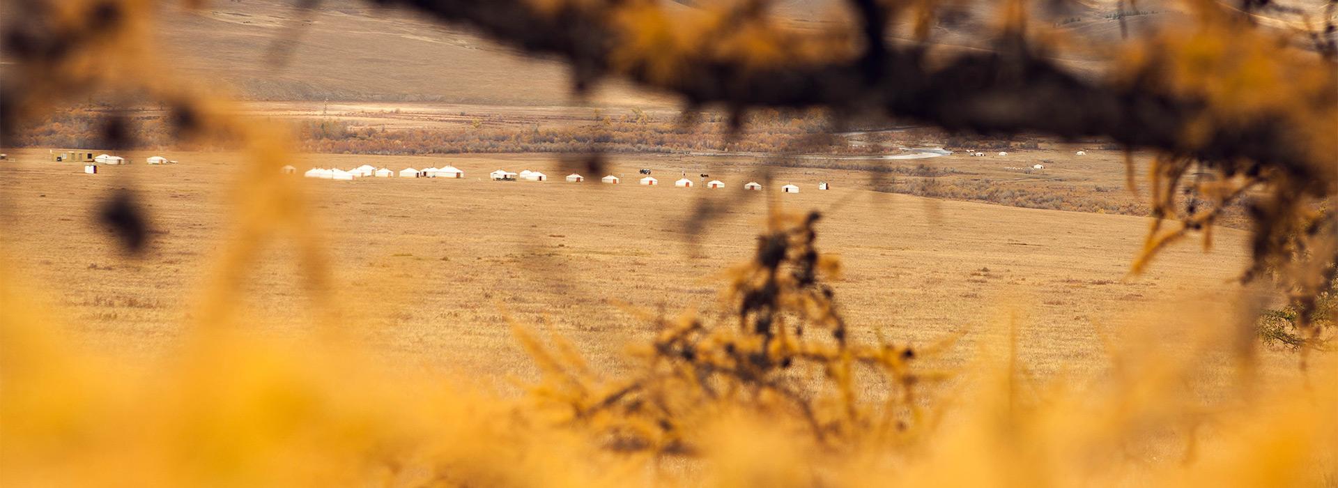autumn-season-in-jalman-meadows-wilderness-ger-camp