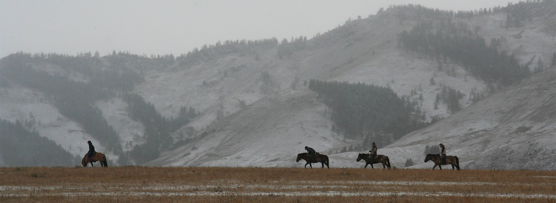 jalman-meadows-winter