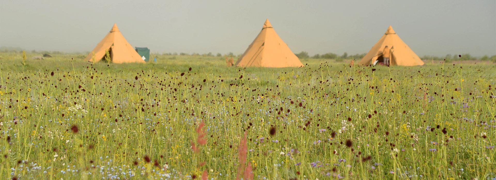 mongolian-grassland-with-tentipi