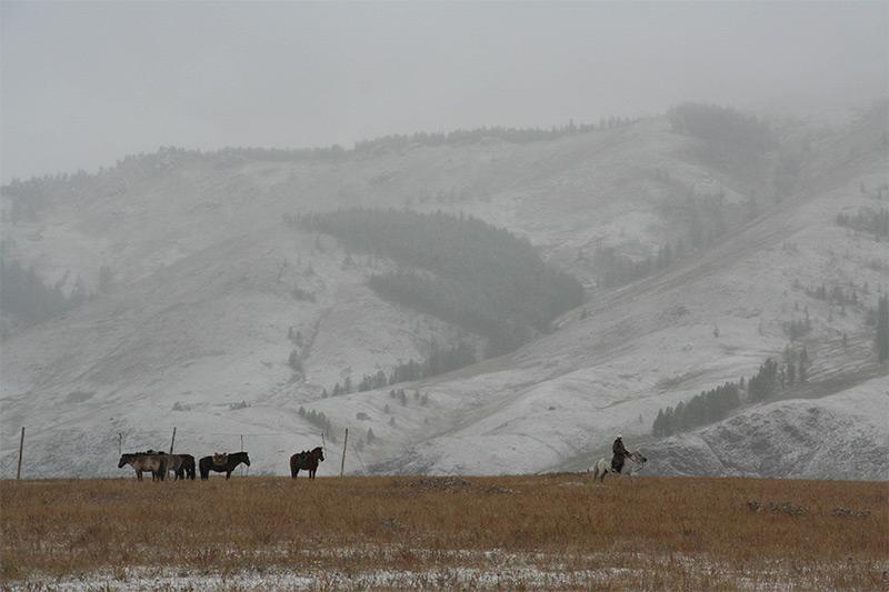 snow-at-jalman-meadows