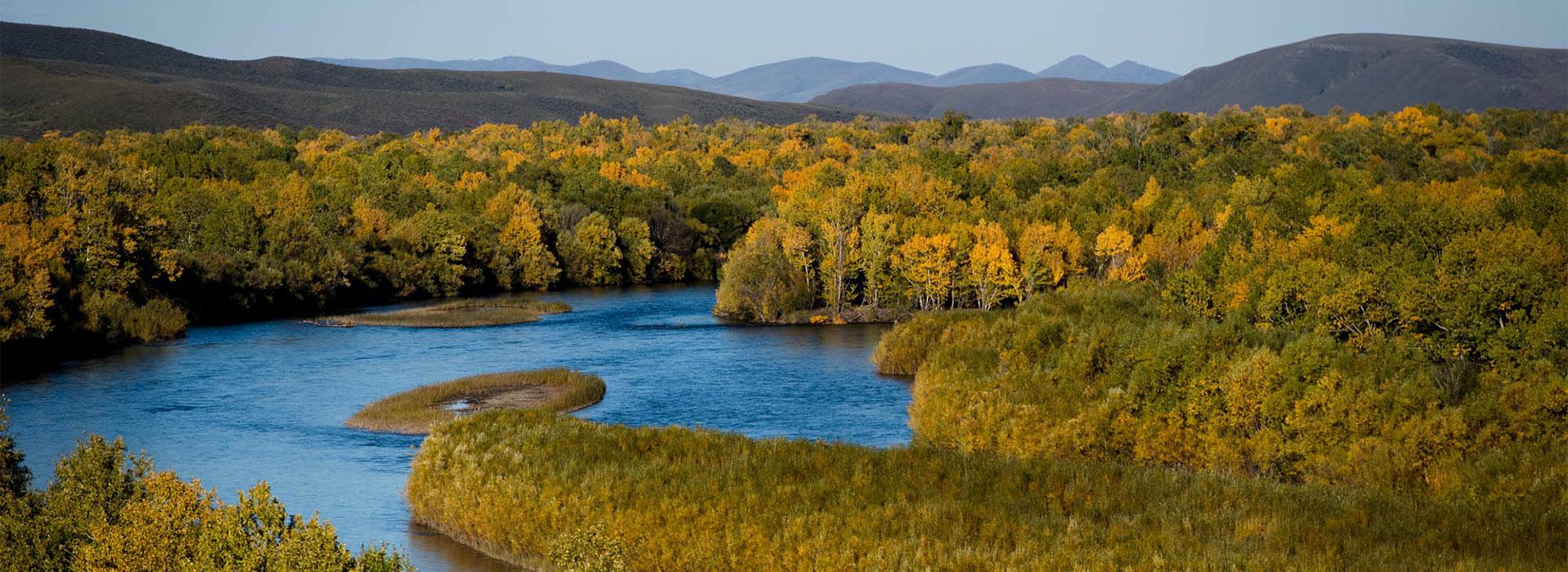 mongolian-river